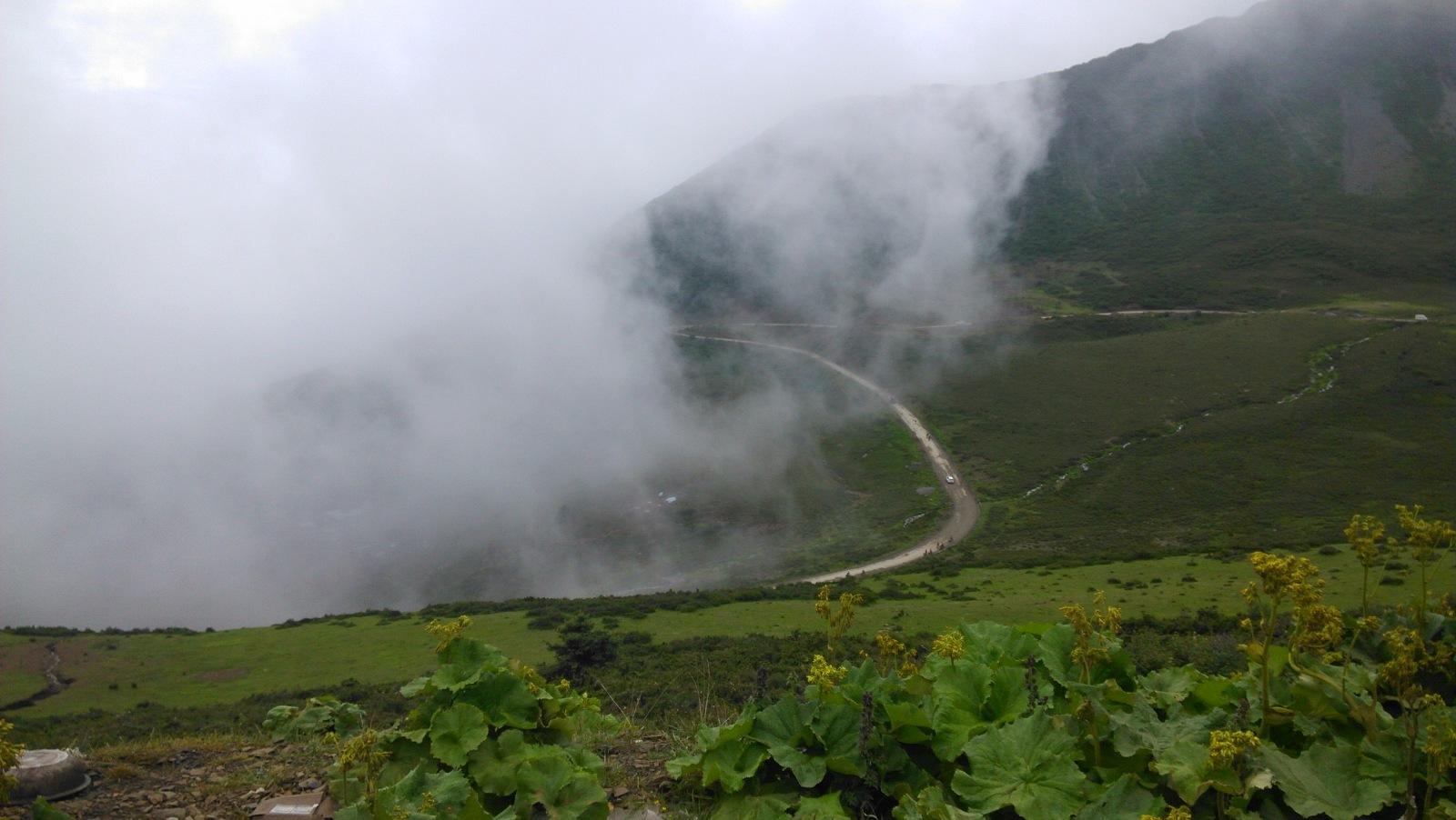 山上的路都是这样啦,车辆们纷纷冲破云雾,奔向山顶