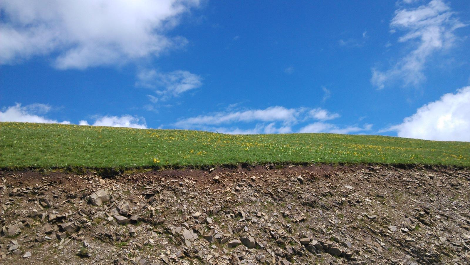 从这片断坡爬上去呢,就能看到大花园啦