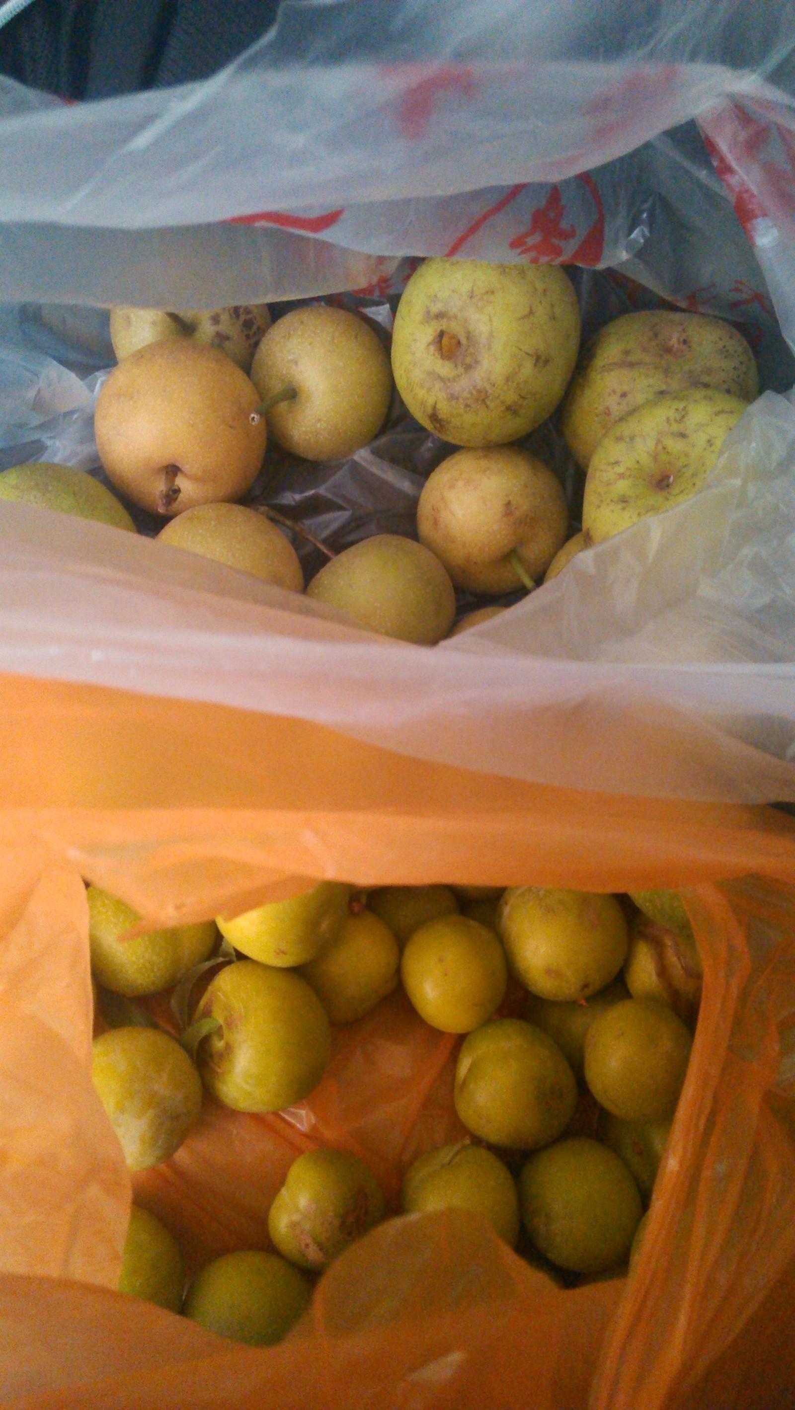 有人卖梨子,便宜卖,但是不太好吃…