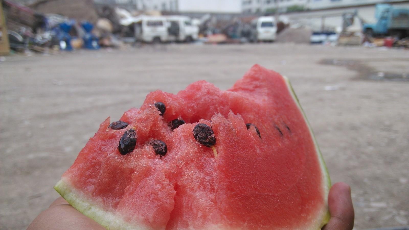 好好吃的西瓜:D……在拉肚子之前我是这么想的-_-||
