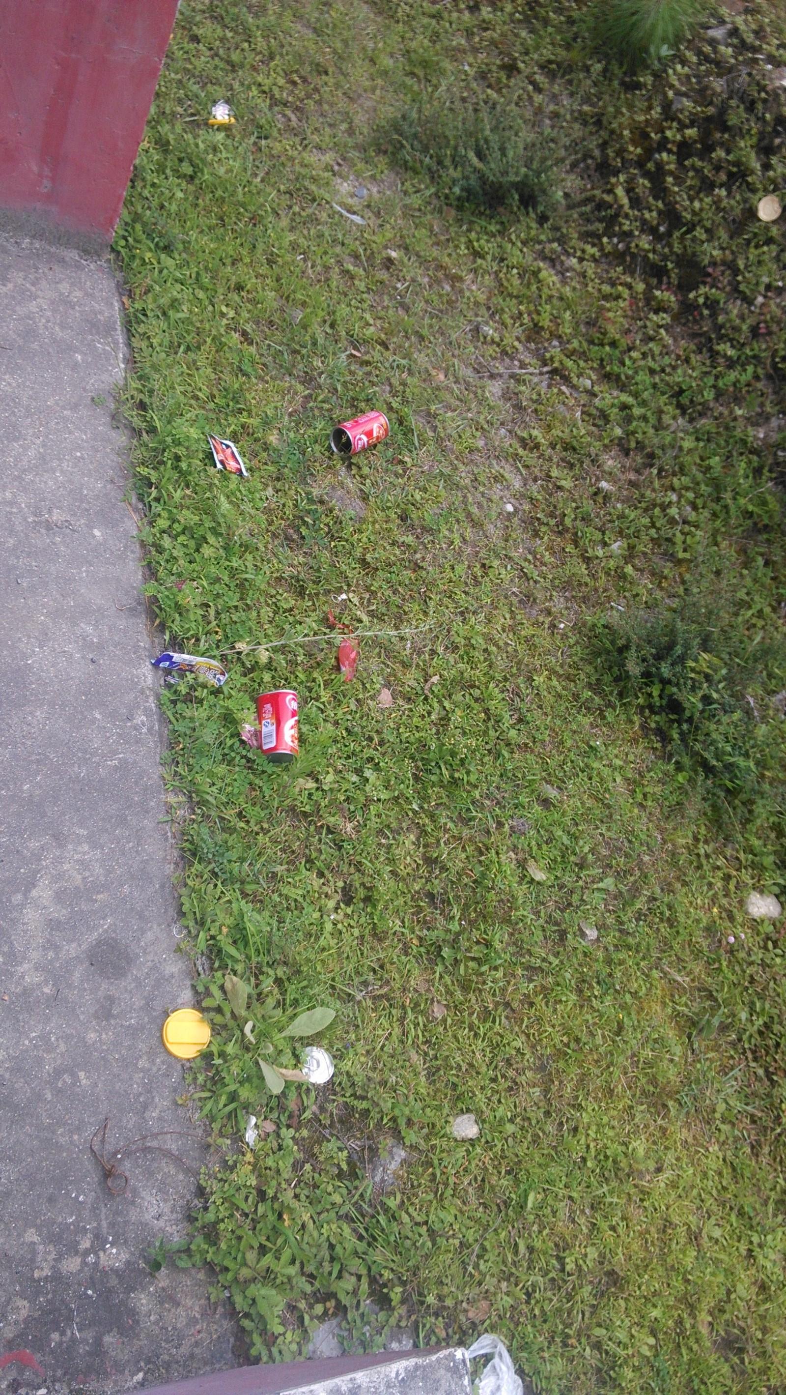 公路边有不少垃圾,再干净的地方都会被糟蹋的啊