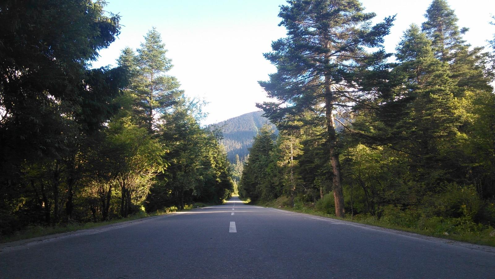 唯美的高山公路