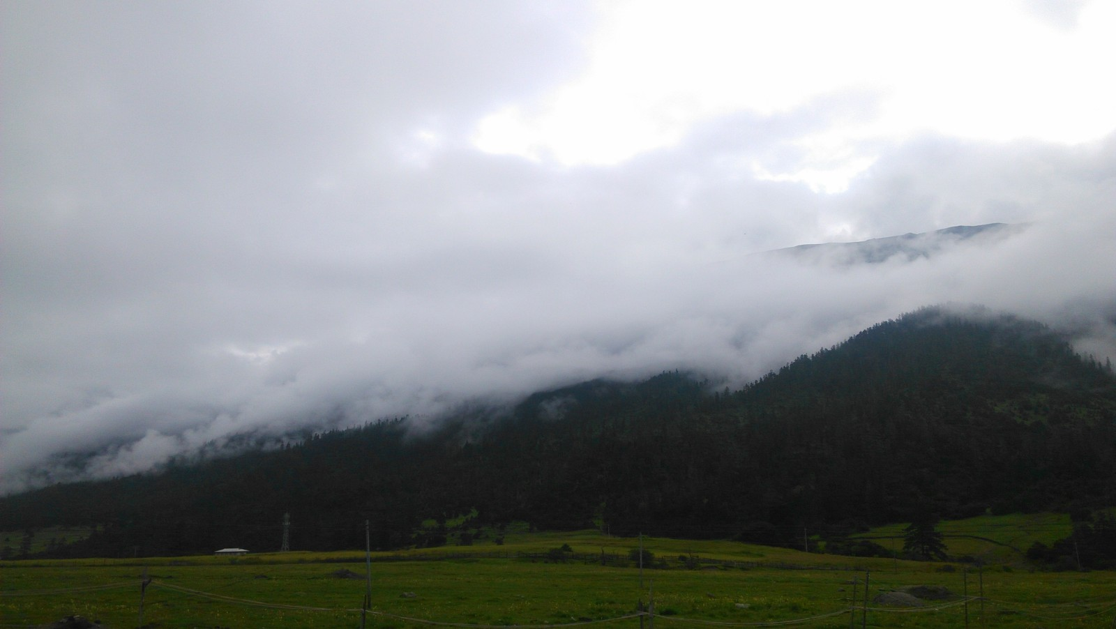 云雾自有ta的美